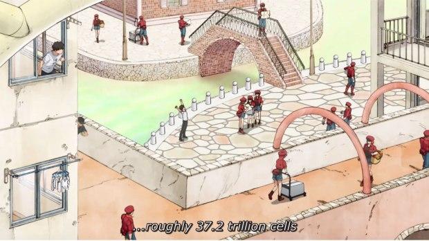 cells-3