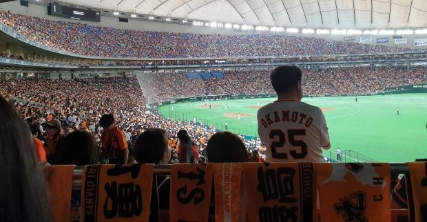 giants baseball fans