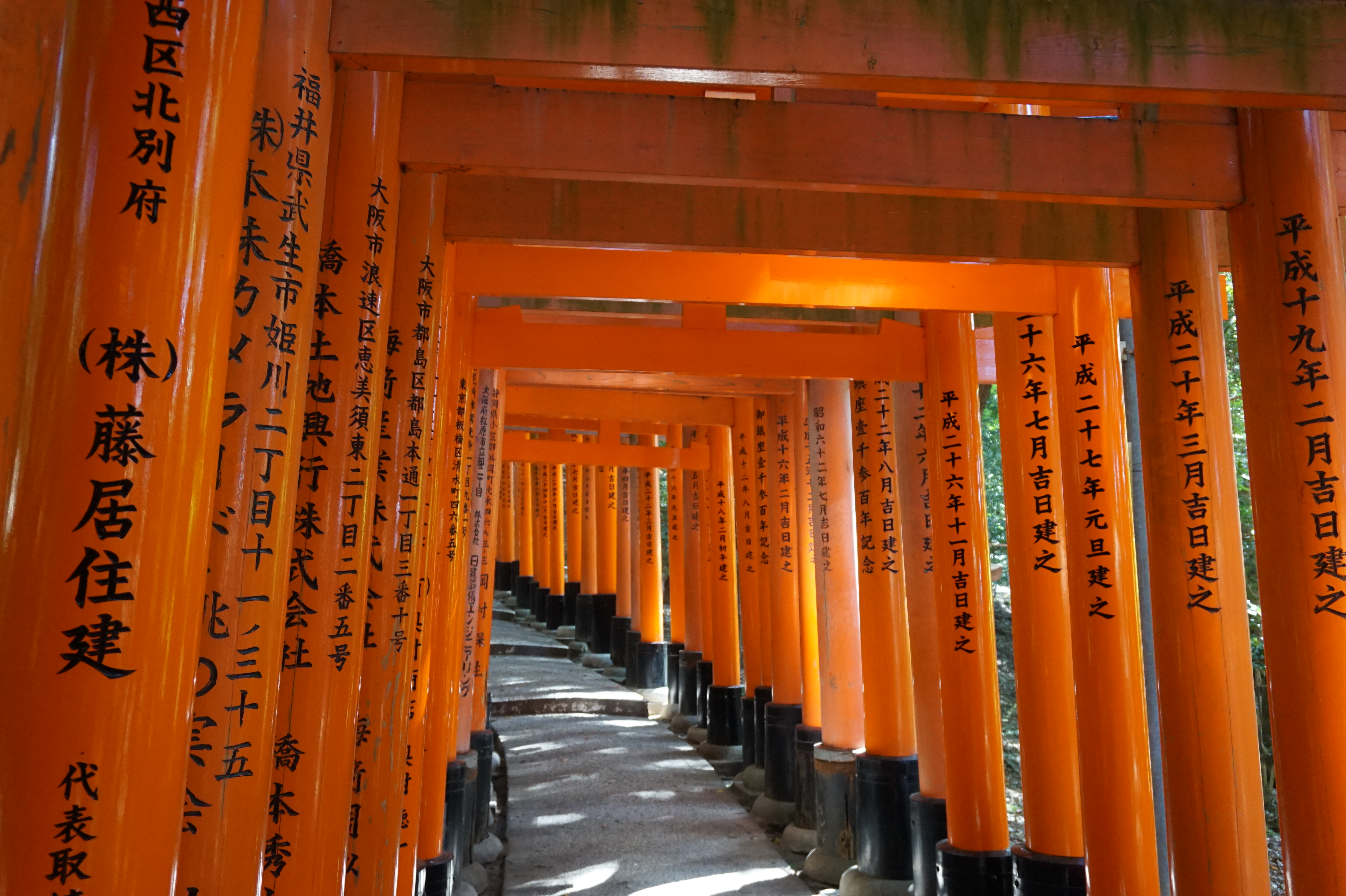 Geek It! Out and About: A Moment in Time: Visiting Fushimi Inari Shrine in Japan